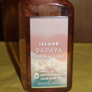 B & BW Island Papaya Hand Soap (NWT)